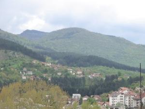 Spring in Sarajevo 006